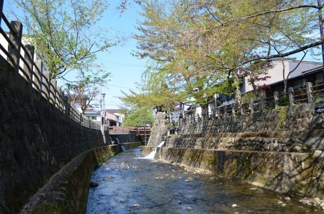 0220W 130504 takayama.jpg
