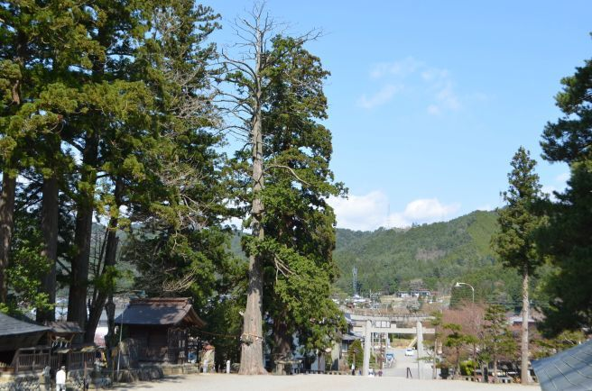 0302W 130504 minasi shrine.jpg