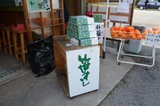 0414S 130504 zensyoji.jpg