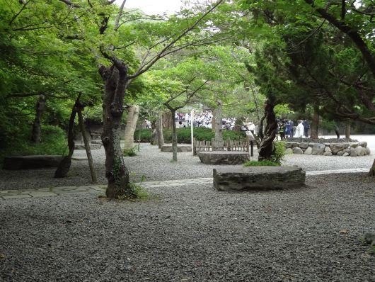 1205250106 daibutsu.jpg