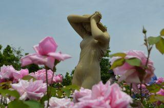 120526107 kana garden.jpg