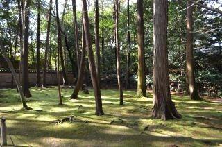 140209 2308S toshodaiji temple.jpg