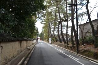 140209 2401S yakushiji temple.jpg
