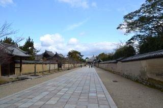 140209 2604S horyuji temple.jpg