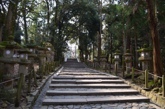 140210 3304W kasugataisha shrine.jpg