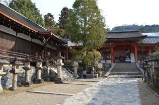 140210 3306S kasugataisha shrine.jpg