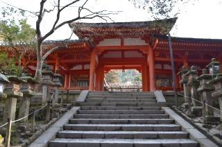 140210 3307S kasugataisha shrine.jpg