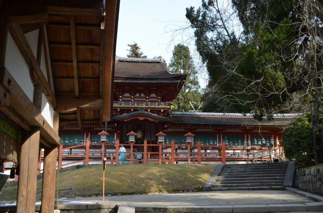 140210 3309W kasugataisha shrine.jpg