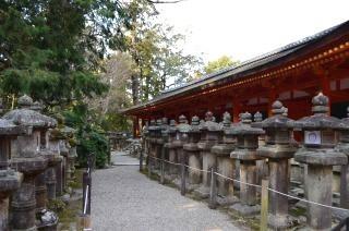 140210 3310S kasugataisha shrine.jpg