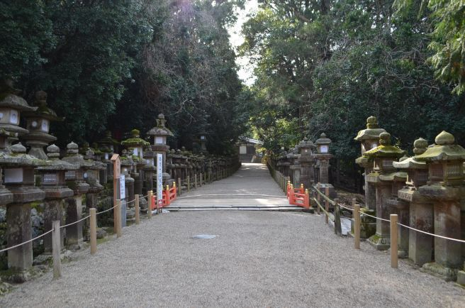 140210 3313W kasugataisha shrine.jpg