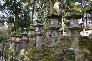 140210 3317S kasugataisha shrine.jpg