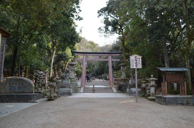 140210 3319W kasugataisha shrine.jpg