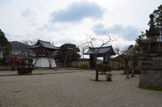 140210 3405S shinyakushiji temple.jpg